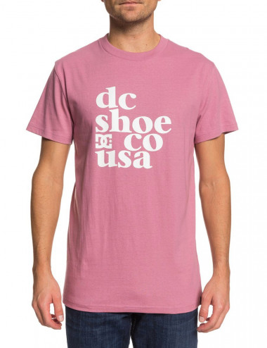 Dc Shoes Just bang tee EDYZT04100-PJP0