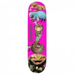 "Deck skate Alltimers Reptiles n rolexs 8.3\\"" ALLTRNR83"