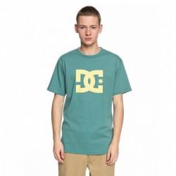 T-shirts Dc Shoes Star ss EDYZT03721-XGGY