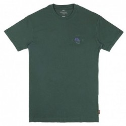 T-shirts Globe Blazed tee GB01830019