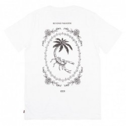 Globe T-shirts Paradise tee GB01830039
